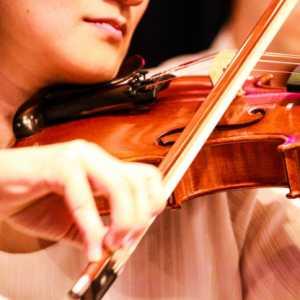 「モンスターハンター オーケストラコンサート 狩猟音楽祭2017」の先行抽選に応募しました!